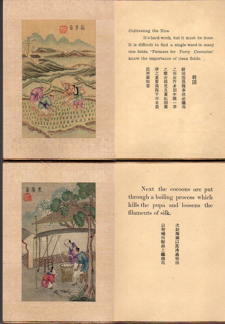 vergleich weber napoleon